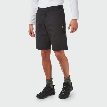 Craghoppers Verve Short - Black
