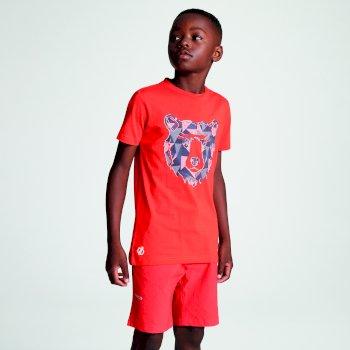 Frenzy T-Shirt für Kinder orange mit Aufdruck Bär