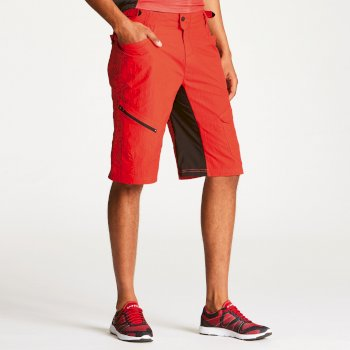 Dare2b Men's Adhere Convertible Shorts Seville Red
