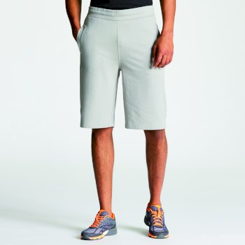 Men's Evasive II Shorts - Ash Grey