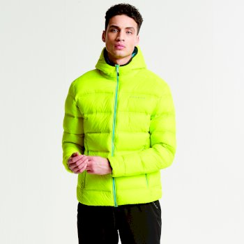 Dare 2b Men's Downtime Down Fill Insulated Jacket - Neon Spring
