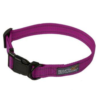 Comfort Hardwearing Dog Collar Azalea