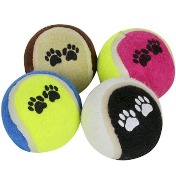 Regatta Fetch Ball Set 6cm Diameter - Blue