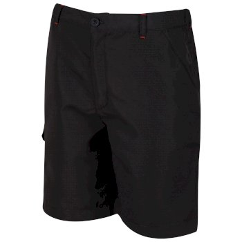 Regatta Kids Sorcer Lightweight Short - Ash