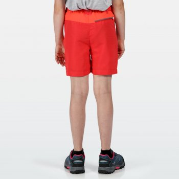 Sorcer Mountain-Shorts Für Kinder Rosa