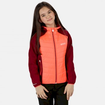Regatta Kids' Kielder IV Lightweight Hooded Hybrid Walking Jacket - Fiery Coral Beetroot