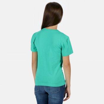 Regatta Kids' Bosley III Printed T-Shirt - Deep Mint