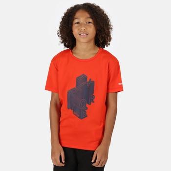 Alvarado V Graphic T-Shirt für Kinder Orange