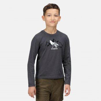 Wenbie II bedrucktes Langarmshirt für Kinder Grau