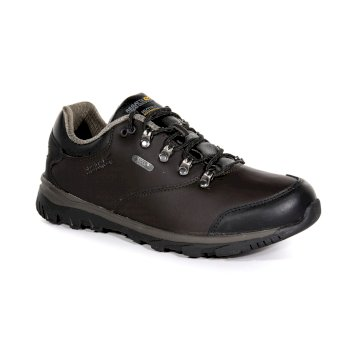 Regatta Men's Kota Leather Low Walking Shoes Peat Teatop