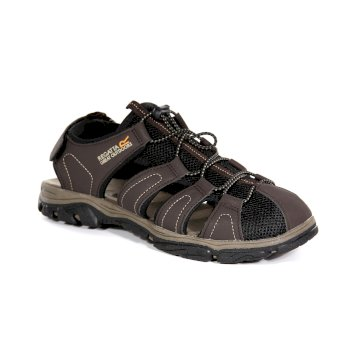 Regatta Men's Westshore II Sandals - Peat Treetop