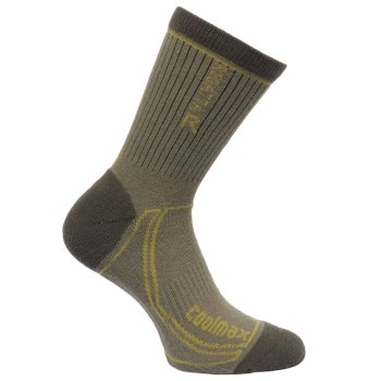 Regatta Men's 2 Season Coolmax Trek & Trail Socks - Dusty Olive Dark Spruce