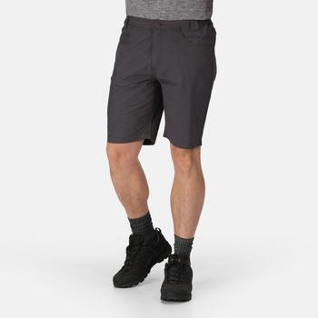 Delgado Shorts für Herren Grau