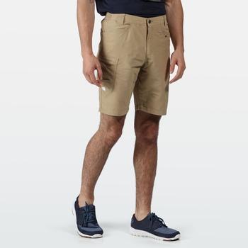 Delgado Shorts für Herren Braun