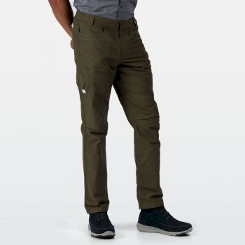 Delgado Shorts für Herren Grün