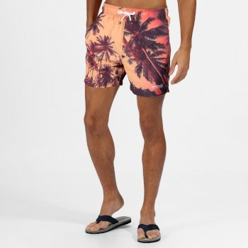 Regatta Men's Mawson II Swim Shorts - Sunset Photographic Print