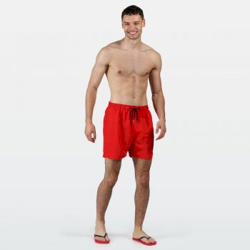 Regatta Men's Mawson II Swim Shorts - Pepper