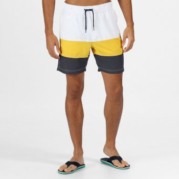 Regatta Men's Bratchmar VI Swim Shorts - White Grapefruit