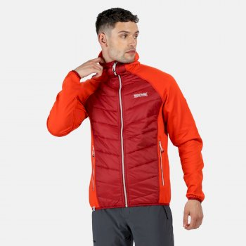 Regatta Men's Andreson IV Lightweight Insulated Hybrid Jacket - Burnt Salmon Delhi Red