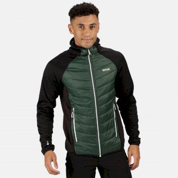 Regatta Men's Andreson V Hybrid Insulated Quilted Hooded Walking Jacket - Deep Forest Black