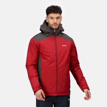 Regatta Men's Thornridge II Waterproof Insulated Walking Jacket - Delhi Red Ash