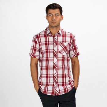 Regatta Men's Deakin III Short Sleeve Checked Shirt White Delhi Red