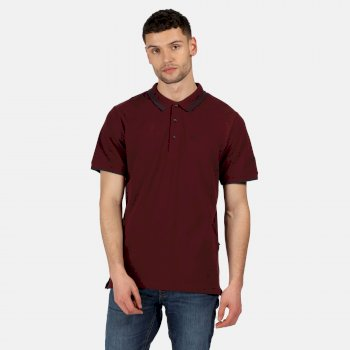 Regatta Men's Talcott II Pique Polo Shirt - Port Royale