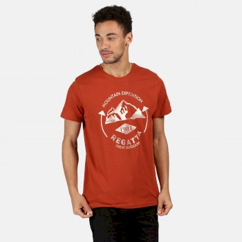 Regatta Men's Cline IV Graphic T-Shirt - Rust Orange Mountain Print