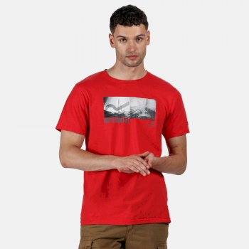 Regatta Men's Cline IV Graphic T-Shirt - Delhi Red Coastal Print