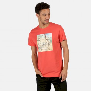 Regatta Men's Cline IV Graphic T-Shirt - Spice Red