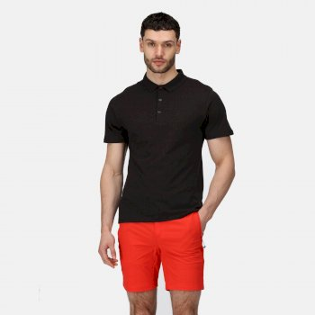 Regatta Men's Sinton Lightweight Polo Shirt - Black