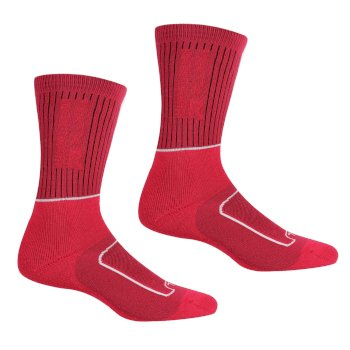 Regatta Women's Samaris 2 Season Socks - Cherry Pink White