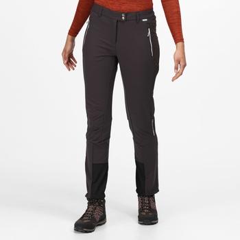 Mountain Winter Walkinghose für Damen Grau