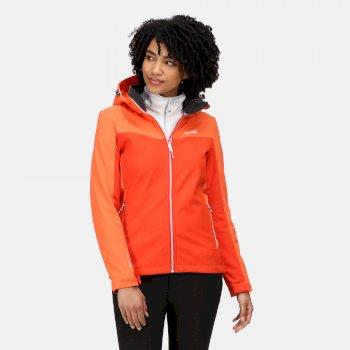 Desoto VII Softshell-Wanderjacke mit Kapuze für Damen Orange