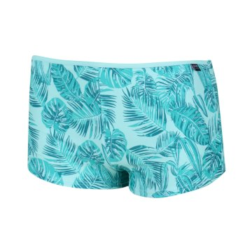 Aceana Bikini-Shorts für Damen Grün