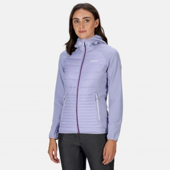 Regatta Women's Anderson V Hybrid Insulated Quilted Hooded Walking Jacket - Lilac Bloom