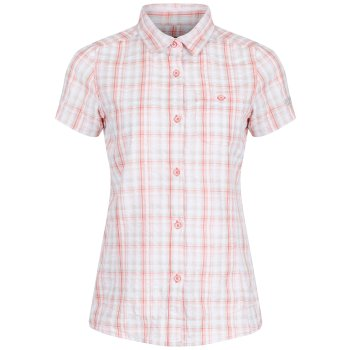 Regatta Jenna Shirt - Candy Shock